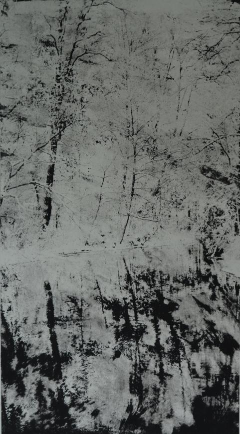 Ensilumi, 2, 34 x 18 cm, kopiografiikka, 2016
